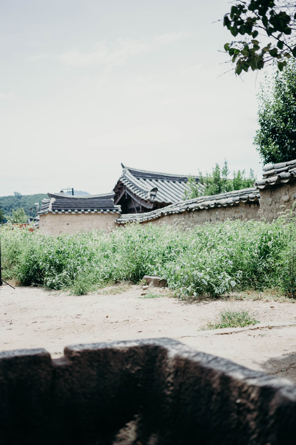 Gyeongju, South Korea: The City That Stole My Heart | On the Street Where We Live (aretherelilactrees.com)  Yangdong Folk Village