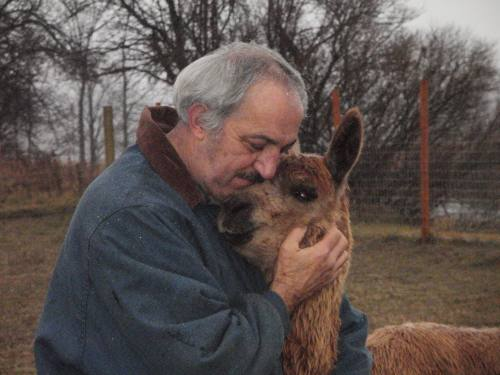 Tom Payne is one of the owners of Setting Sun Alpacas and has been married to his wife, Shelly, since 1995. They fell in love with alpacas in 2011 and decided to start a farm of their own in Mesick, Michigan, right across the street from  Big Willows Alpaca Ranch . Apart from taking care of the alpacas, he also weaves rugs from the alpaca fiber, as well as denim, polar fleece, and afghan salvage.