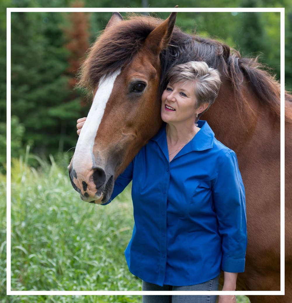 GAIL BOONE.Certified Executive Coach and a graduate of the Academy of Coaching with Horses,Gail is passionate about equine facilitated coaching and learning.Partnering with her herd to offer programs designed to transform lives, she brings a wealth of experience as a leader, executive, facilitator, and educator, from not-for-profit, board, management, operations and program settings. Gail is motivated to serve those looking to make a meaningful difference in the way they choose to live their lives. -