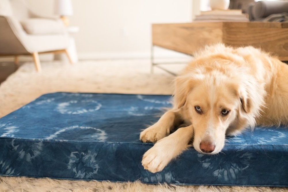 Love_Ding_Blog_DIY_Organic_Indigo_Dyed_Dog_Bed_Box_Cushion.jpg