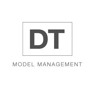 dt model .jpg