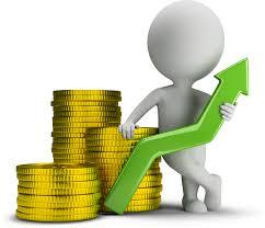financial & credit improvement solutions