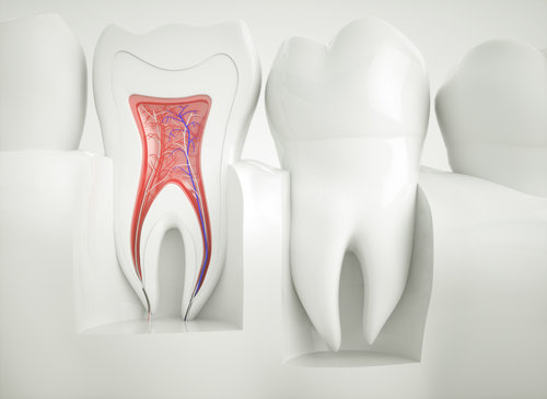 An Overview to Dental Problems