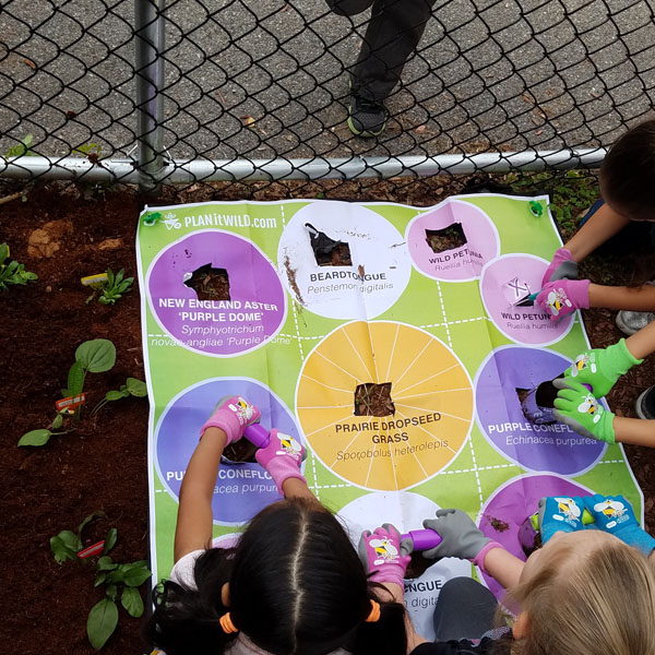 """The kids enjoyed planting very much!"" - - Mrs. C, Yonkers School Teacher"