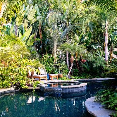 lush-garden2.jpg
