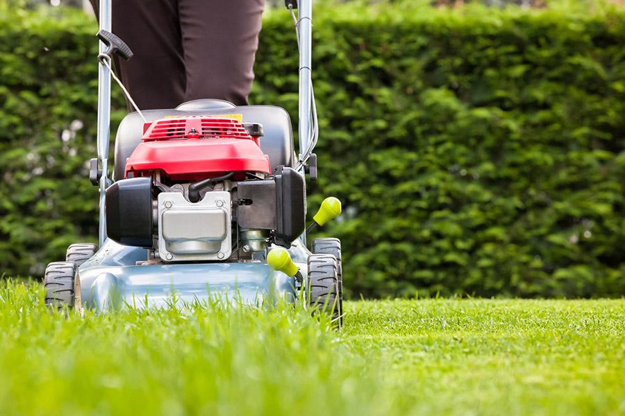 Front Yard Maintenance -