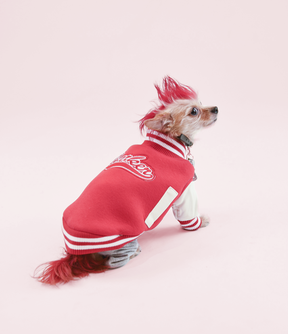 Rock and Roll, y'all - Coco loves to look fly.  You can probably tell by her red mohawk-do.  Of course, she uses an all-vegan dye to keep it fresh.  What else?  We think it matches her Barker Stadium Jumper perfectly.