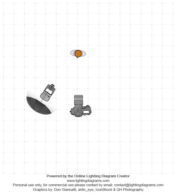 lighting-diagram-1527470647.jpg