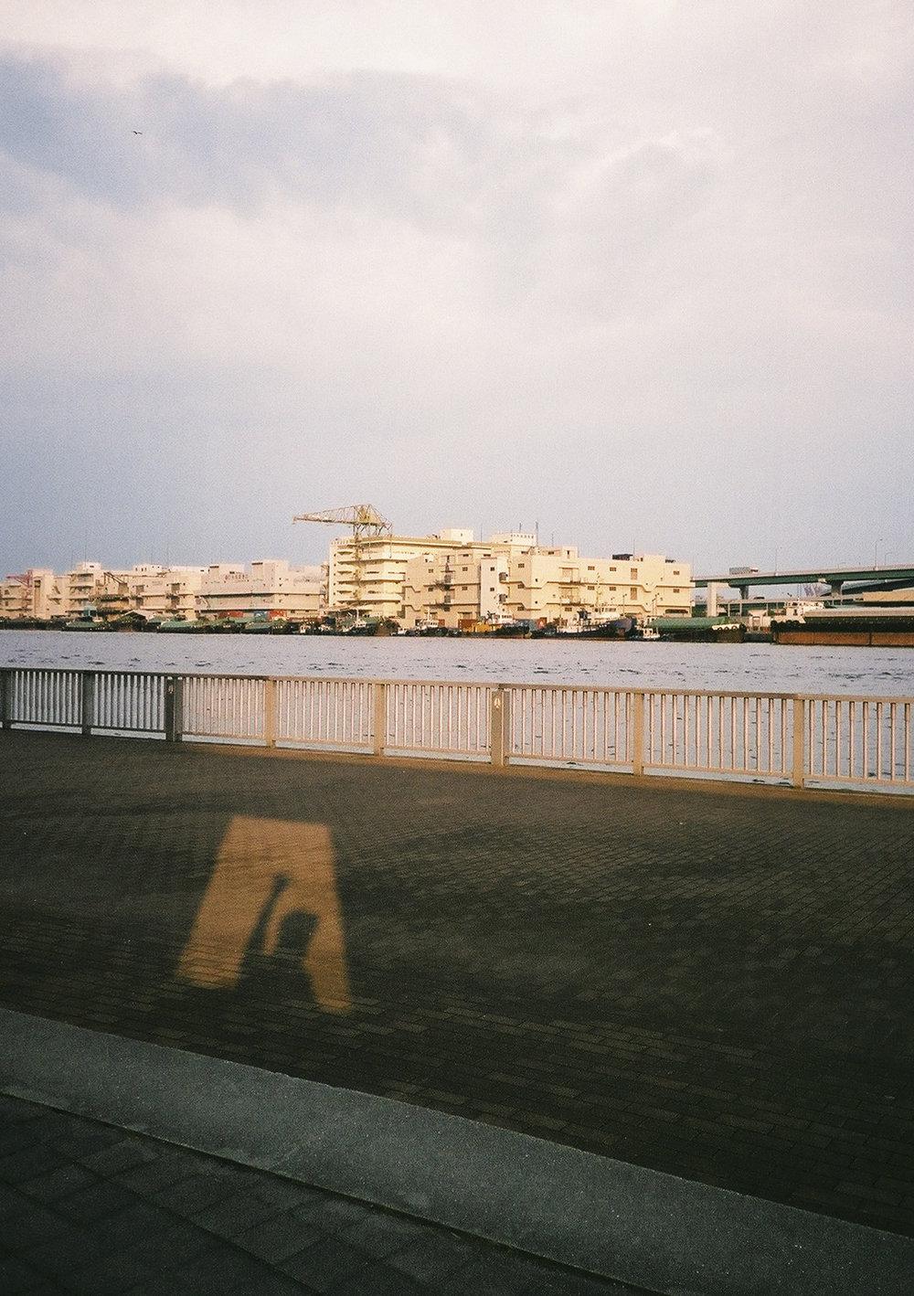 180802_Film_july-35.jpg