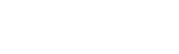 ALLIE FULLER GROUP