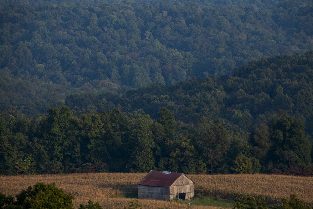 2013.09.18_ todd county _lemon-550.jpg