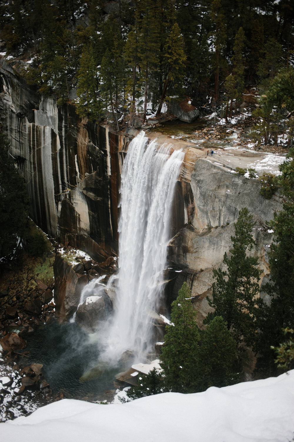 2018.03.20_ yosemite np _lemon-192.jpg
