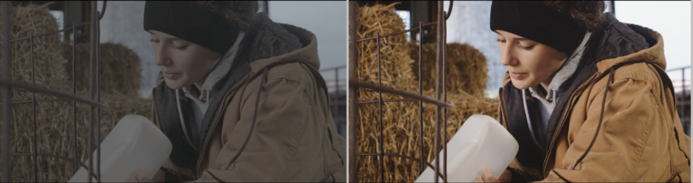 Ungraded CLog-2 left; Graded 12 bit RAW right. Captured on Canon C200, graded in DaVinci Resolve.