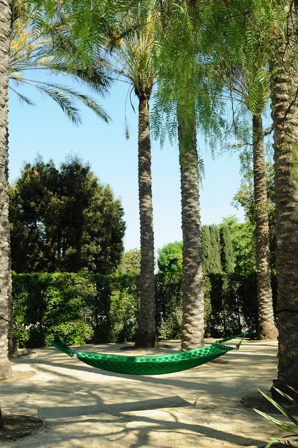 Lime green Ting Sling seatbelt hammock hanging between palm trees, featured in the exterior design surrounding a Los Angeles office space.