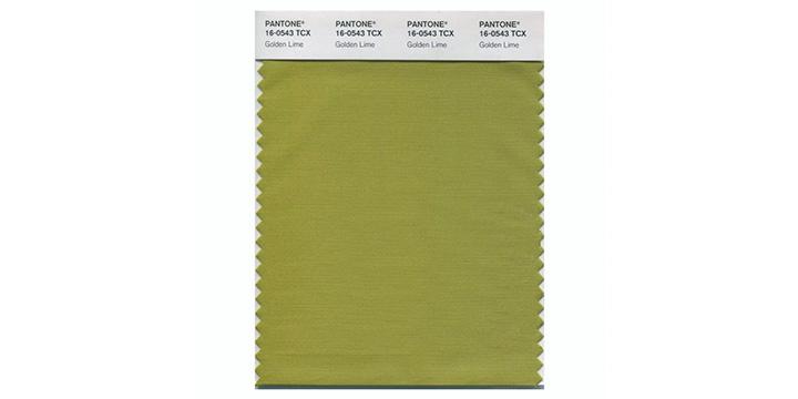 Golden Lime Pantone.jpg