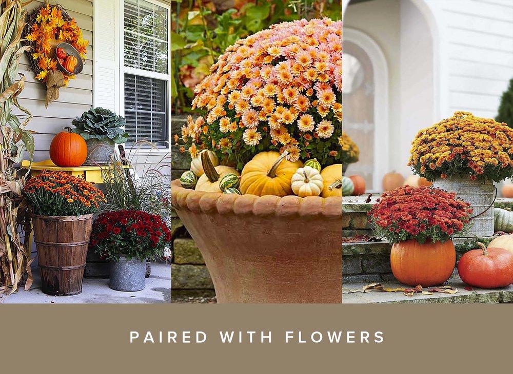 Pumpkin Front Door Inspiration Decor Flowers