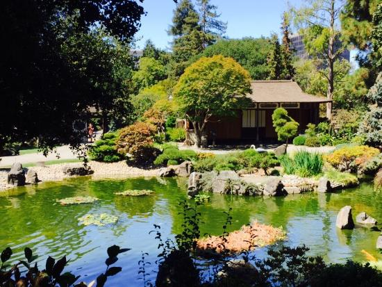The picturesque  San Mateo Japanese Garden