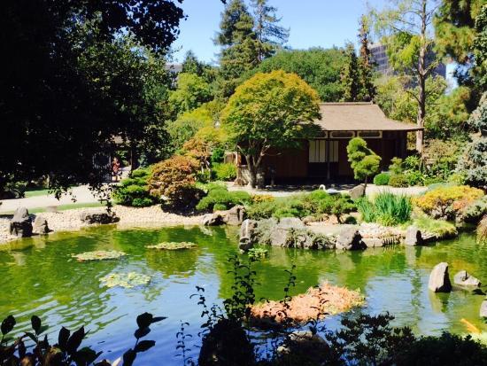 The beautiful  San Mateo Japanese Garden