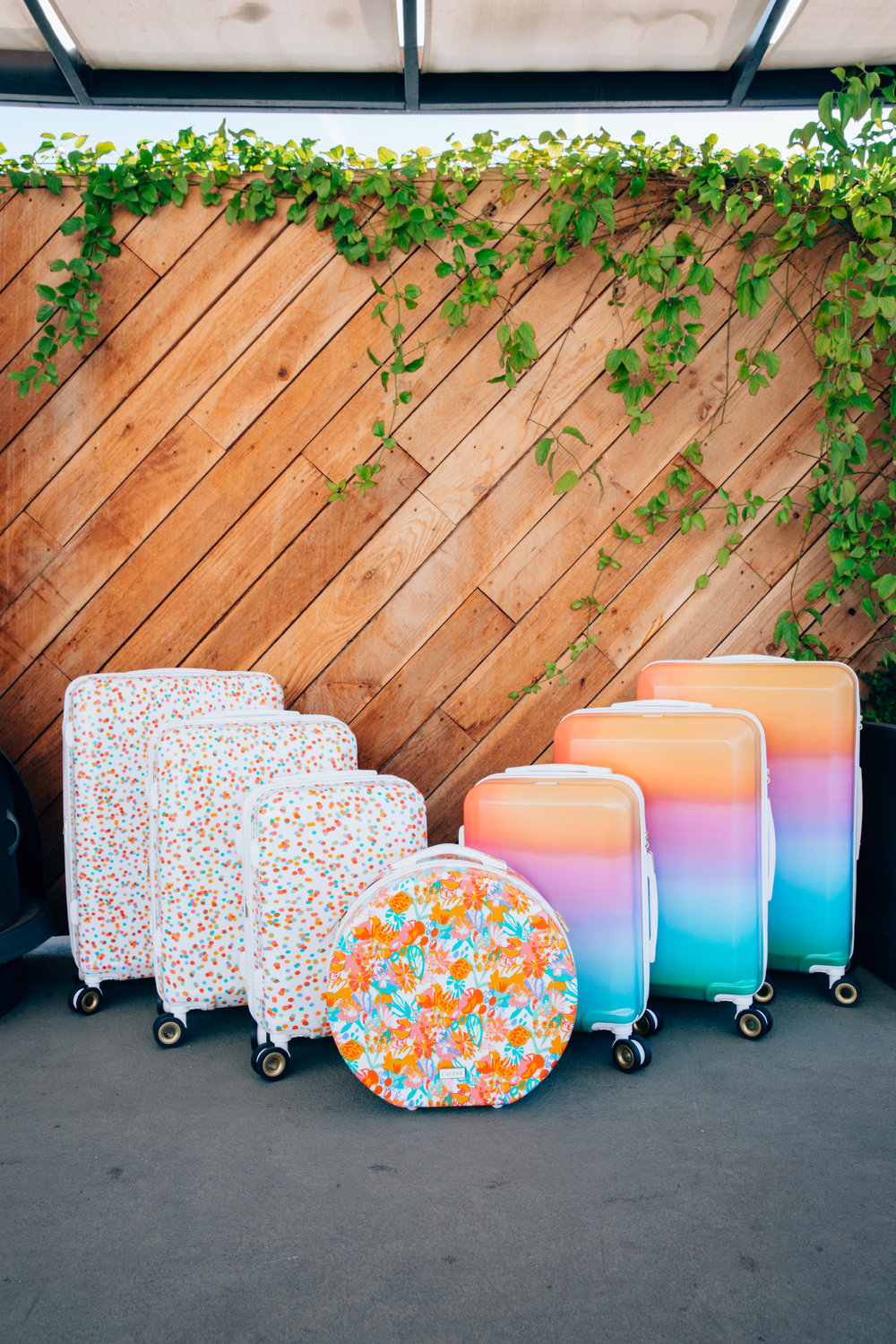 Check out this luggage lineup!