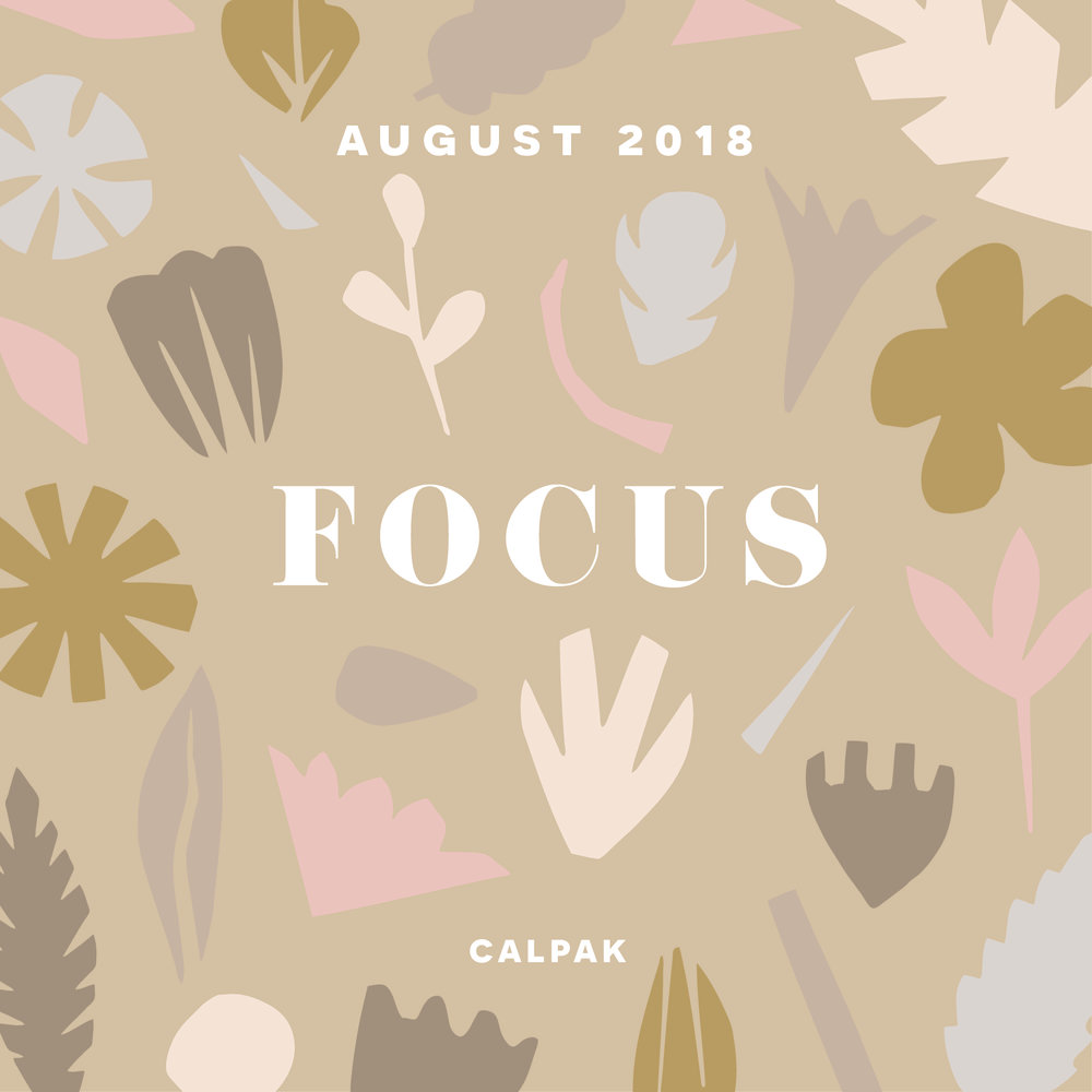 "August 2018, ""Focus"", CALPAK"