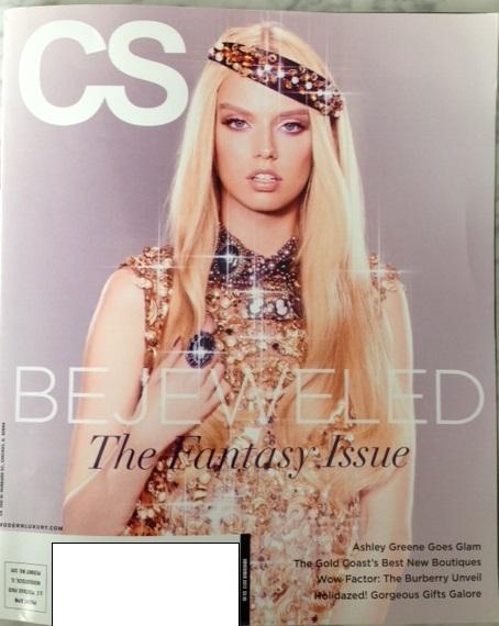 CS-Chicago-Social-Modern-Luxury-Cover1.jpg