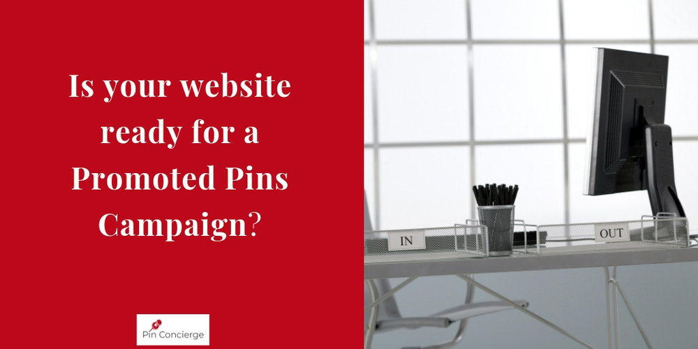 15_TWT_Is Your WEbsite REady for promoted Pins campaign.jpg