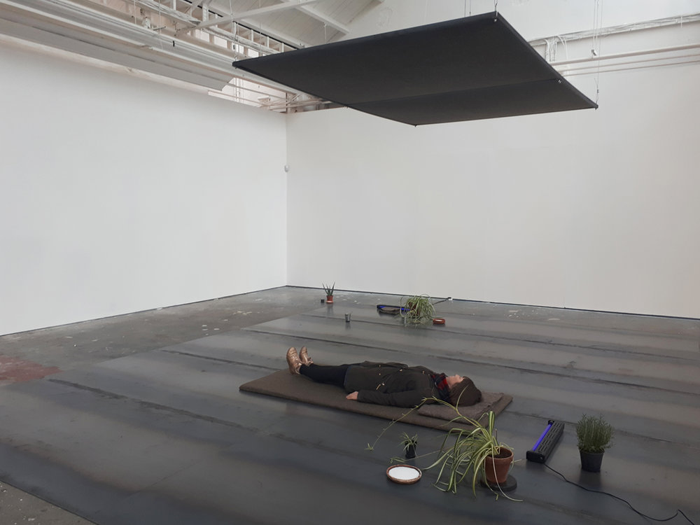 propositional things , 2017 mild steel, wool, plywood, water, salt, chlorophytum comosum plants, aloe vera, rosemary, UV light, ceramic pots, orgonite, galvanised buckets, pith ball electroscope. dimensions variable