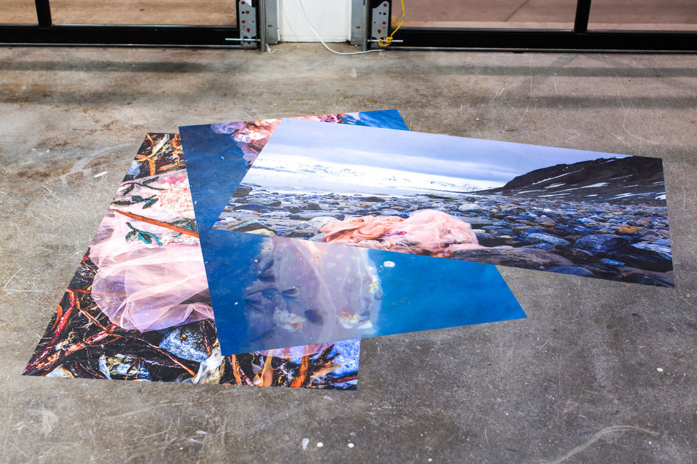 Anna M. Clark, A is for Arctic, archival pigment prints on vinyl, 60x36 (each), 2018
