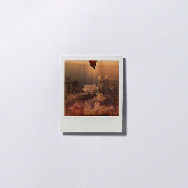 【RAW Feature】  在娑婆世界,所有事都是煩惱。「就像福島,你想想為何需要核電廠?」知名香港紀實攝影師黃勤帶借用了108的隱喻,特意選用寶麗來拍攝福島的災後日常,在細微處着墨。(Link in Bio)  #ProjectRAW #Art #Culture #photography #interview #creation #artist #projectrawhk #hongkong #rawfeature #fukushima #polaroid #photobook #wongkantai