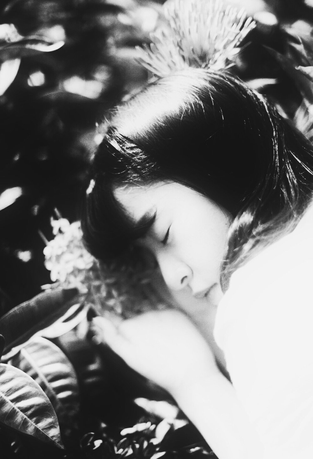 作者介紹 - Bella Tam 貝拉說寫字的人,英語文學學士畢業,全職嗜甜與觀映愛好者,深信靈魂不滅,偶而養花。分身是居於澳門的攝影人一名。