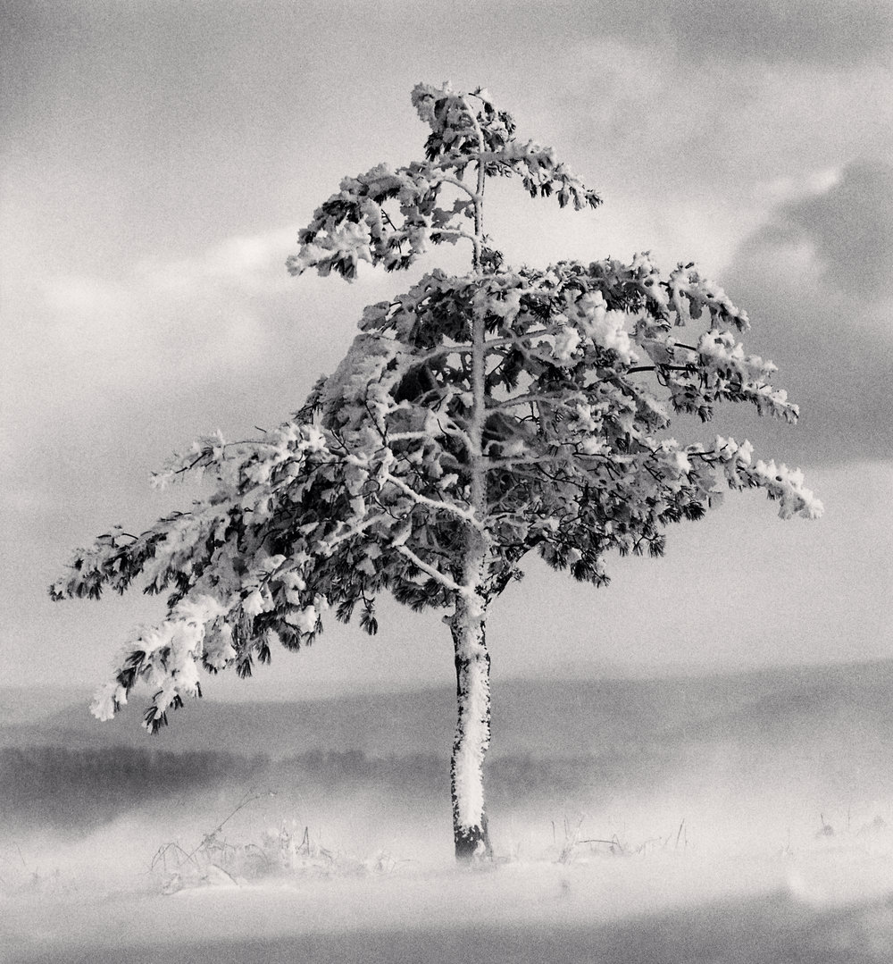 "©Michael Kenna ""Tree in Snowdrift, Yangcao Hill, Wuchang, Heilongjiang, China. 2011"""