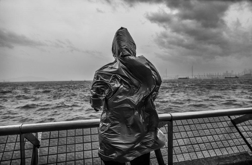 Wind/Water, 2016 © Palani Mohan