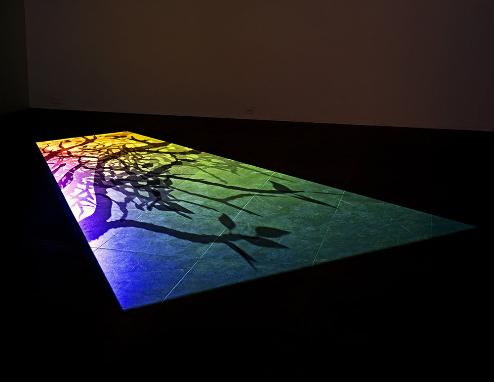 Paul Chan. '2nd l̶i̶g̶h̶t̶', 2006, digital video projection, duration: 14 min. M+, Hong Kong. © Courtesy of the artist and Greene Naftali, New York. Photograph: Jean Vong.