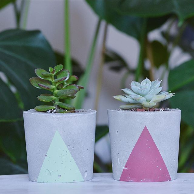 Two of our more recent colors!  #concrete #concretedecor #concreteplanter #denverplants #denver #coloradomakers #coloradomade #colorado #plantsofinstagram #succulents #monstera #succulove