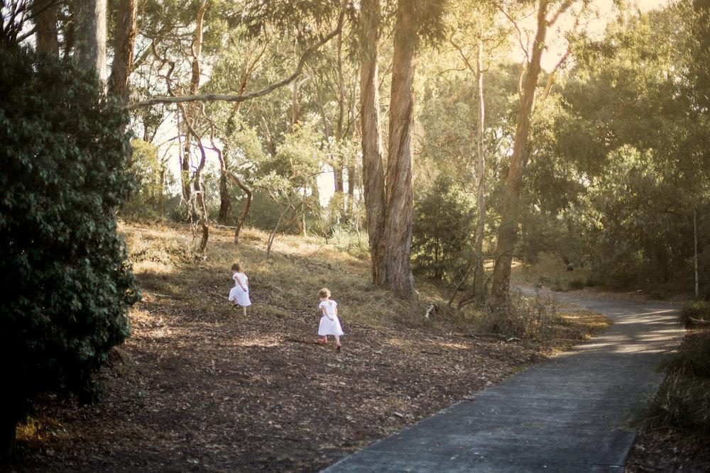 fairypark-8.jpg