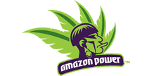 Creating Visuals Clients - Amazon Power.png