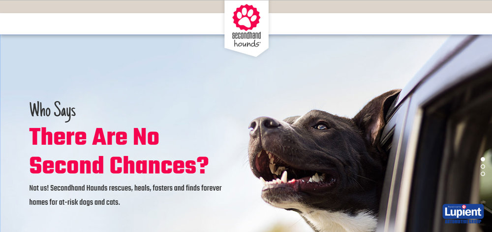 secondhand hounds cover.jpg