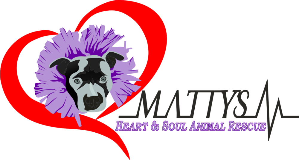 Matty's Heart and Soul Heartbeat full color.png