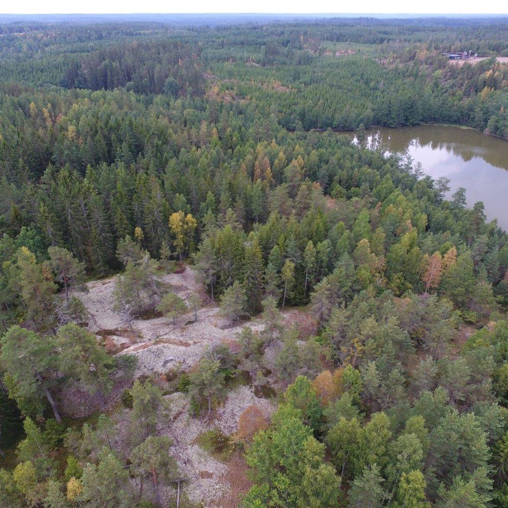 Effektivare arbete i skogen   Vi bygger tillämpningar som bidrar till produktivitet, kvalitet och arbetsglädje.