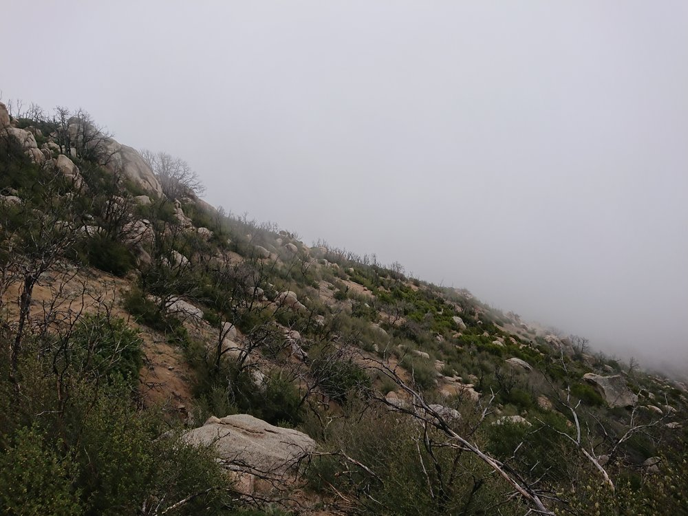 Hiking in the clouds as I was hit with the trails first raindrops.