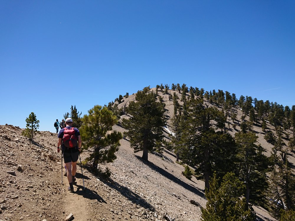 Approaching the summit of Mt. Baden-Powell