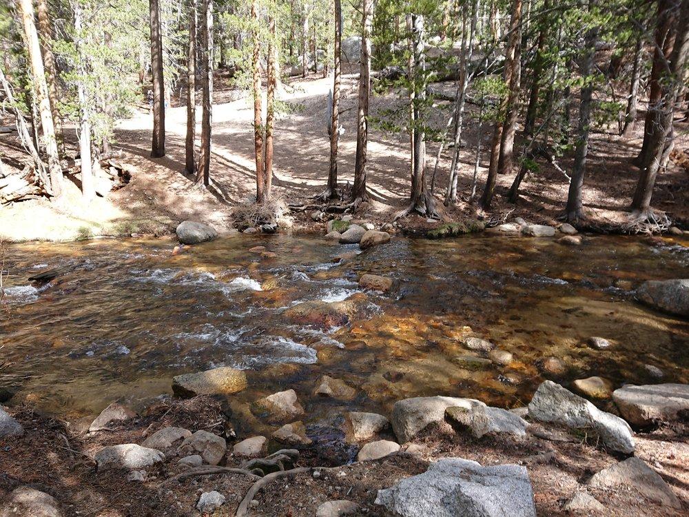 Easy crossing in the water of Guyout Creek