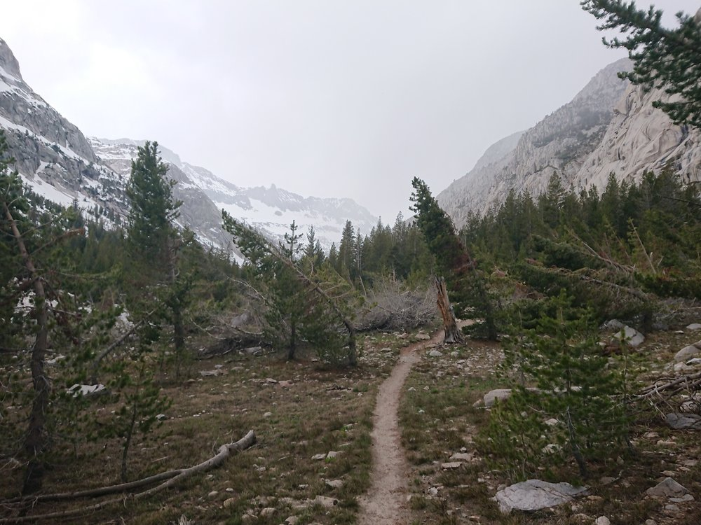 Some of the snow free trail showed signs of avalanche damage