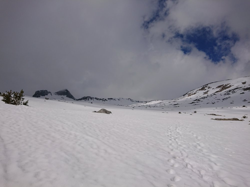 Looking towards Donohue Pass and the post holing footprints