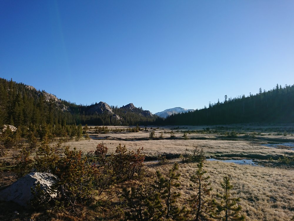 Beautiful meadow that we crossed early in the morning