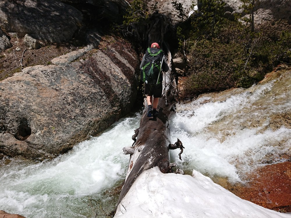 Crossing creeks on logs is always interesting, but we will do a lot to keep our feet dry