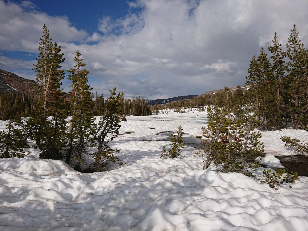 Lots of snow with plenty of suncups