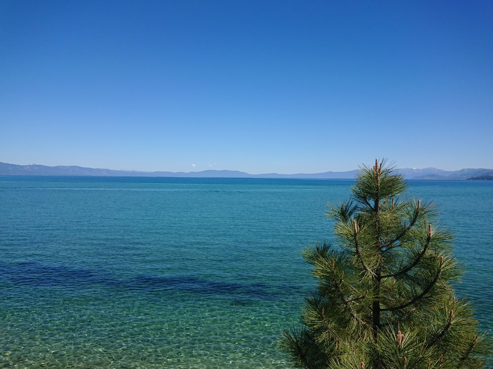 Lake Tahoe is really beautiful with its amazing clear water