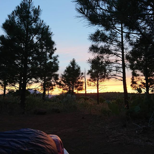 Another beautiful sunset that kept me up past my usual bedtime. Well that and the mosquitos.  #pct #pct2018 #hiking #thruhike #thruhiking #thruhiker #backpacking #trekthepct #wehike #mexicotocanada #nature #liveoutdoors #pacificcresttrail