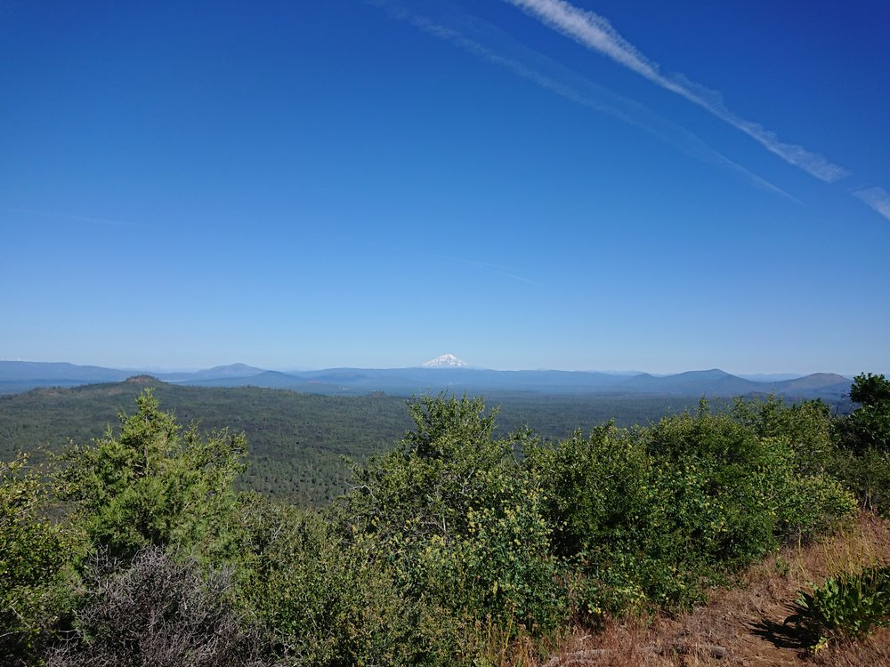 Mount Shasta in the distance. During the day or slowly grew larger